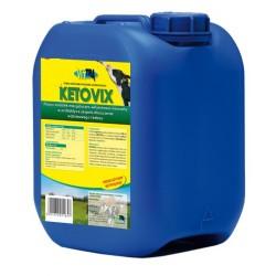 Ketovix 25 kg przeciw ketozie